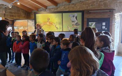 28/10/2019 Visita de l'escola Fedac de Guissona.
